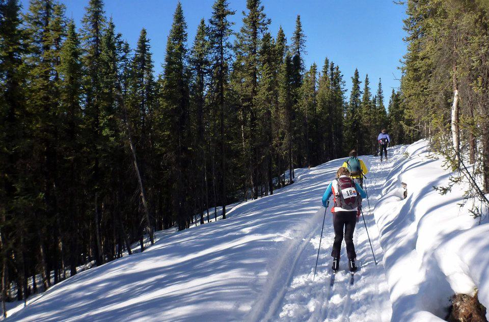 Chena River to Ridge Race Trail